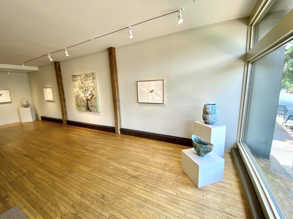 Mako Fujimura's Candid In May exhibit at Morpeth Contemporary